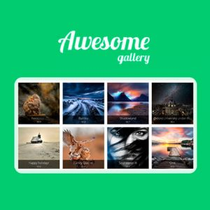 Awesome Gallery - Instagram, Flickr, Facebook galleries on your site